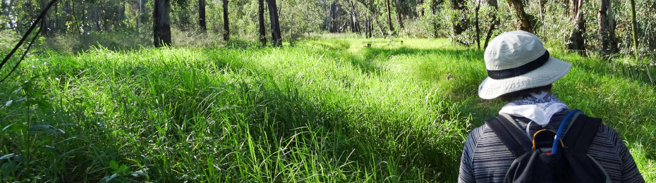 Explore nature on numerous self-guided hiking trails